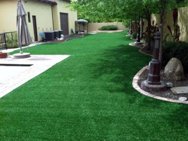 Artificial Grass Photos: Grass Carpet Elkhorn, California Design Ideas, Swimming Pools