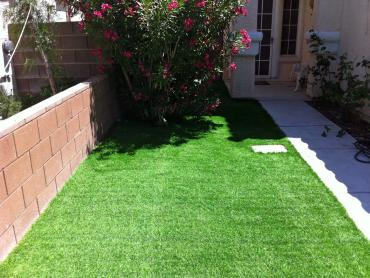 Artificial Grass Photos: Grass Carpet Rio Linda, California Landscaping, Front Yard Landscaping