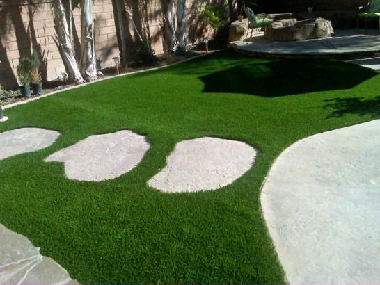 Artificial Grass Photos: Grass Carpet Saratoga, California Design Ideas, Backyard Designs