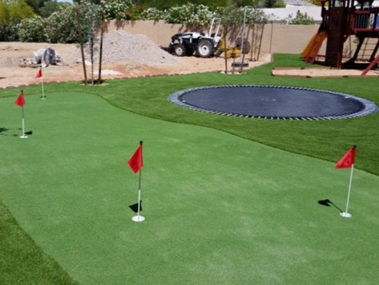 Grass Carpet Shingle Springs, California Outdoor Putting Green, Backyard Landscaping Ideas artificial grass