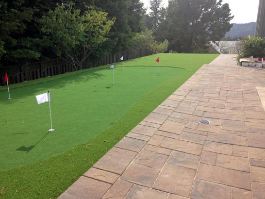Artificial Grass Photos: Grass Carpet Thornton, California Putting Green Flags, Backyard Makeover