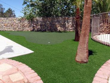 Artificial Grass Photos: Grass Carpet Ukiah, California Putting Green Flags, Backyard Garden Ideas