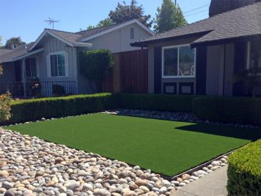 Artificial Grass Photos: Grass Turf Bolinas, California Landscape Design, Landscaping Ideas For Front Yard