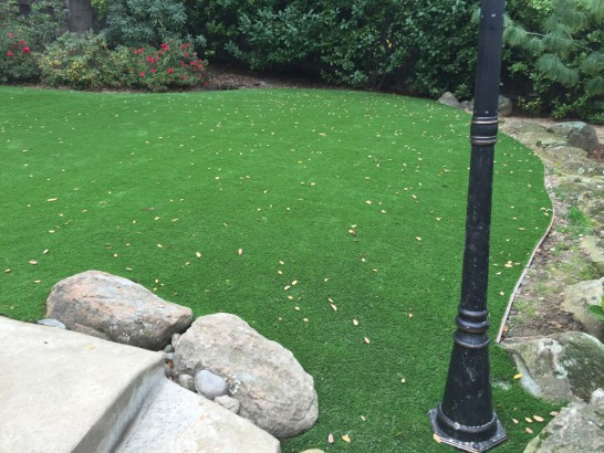 Grass Turf Foothill Farms, California Landscape Rock, Backyard Makeover artificial grass