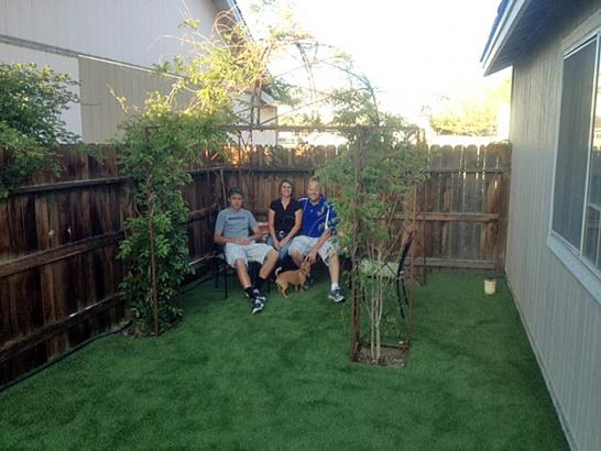 Artificial Grass Photos: Grass Turf Hillsborough, California Drainage, Grass for Dogs