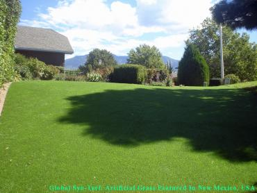 Grass Turf Orinda, California Rooftop, Beautiful Backyards artificial grass