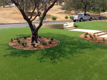 Artificial Grass Photos: Grass Turf Sutter Creek, California Lawn And Garden, Front Yard Landscape Ideas