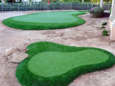 Artificial Grass Photos: Green Lawn Clearlake, California Garden Ideas, Front Yard