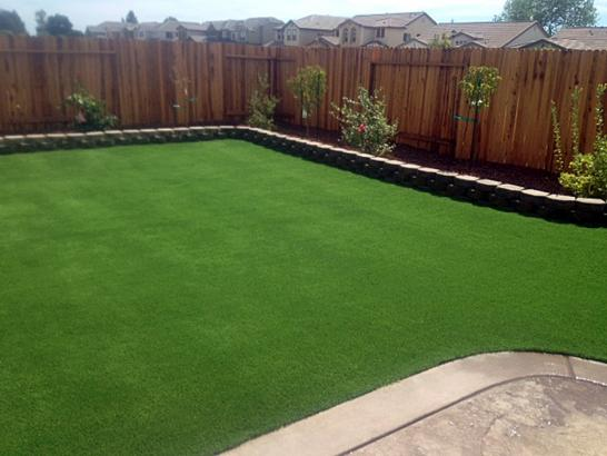 Artificial Grass Photos: Green Lawn Danville, California Landscaping Business, Backyard Landscaping