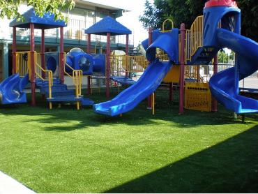 Artificial Grass Photos: Green Lawn Penn Valley, California Garden Ideas, Commercial Landscape