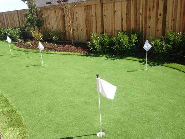 Artificial Grass Photos: How To Install Artificial Grass Columbia, California Home Putting Green, Backyard Design