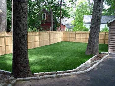 Artificial Grass Photos: How To Install Artificial Grass Wheatland, California Rooftop, Backyard Landscape Ideas