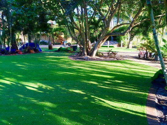 How to Save Money with Artificial Turf artificial grass