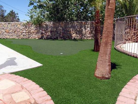 Artificial Grass Photos: Installing Artificial Grass Petaluma, California Best Indoor Putting Green, Backyard Ideas
