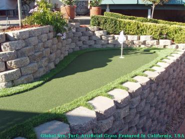 Artificial Grass Photos: Lawn Services Albany, California Roof Top, Backyards