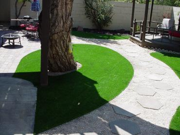 Artificial Grass Photos: Lawn Services Herald, California Lawns, Backyard Makeover