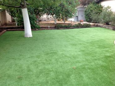 Artificial Grass Photos: Lawn Services Mono Vista, California Backyard Deck Ideas, Backyard Garden Ideas