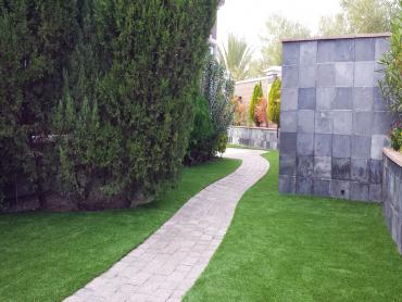 Artificial Grass Photos: Lawn Services Patterson, California Landscape Design, Commercial Landscape