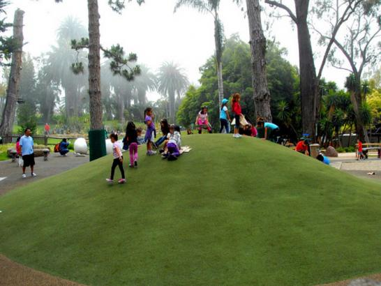 Artificial Grass Photos: Outdoor Carpet Bay Point, California Roof Top, Recreational Areas