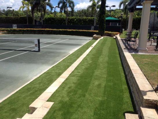 Artificial Grass Photos: Outdoor Carpet Brookdale, California Landscaping Business, Commercial Landscape