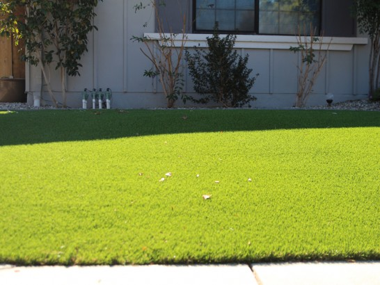 Artificial Grass Photos: Outdoor Carpet Ione, California Backyard Deck Ideas, Front Yard Ideas