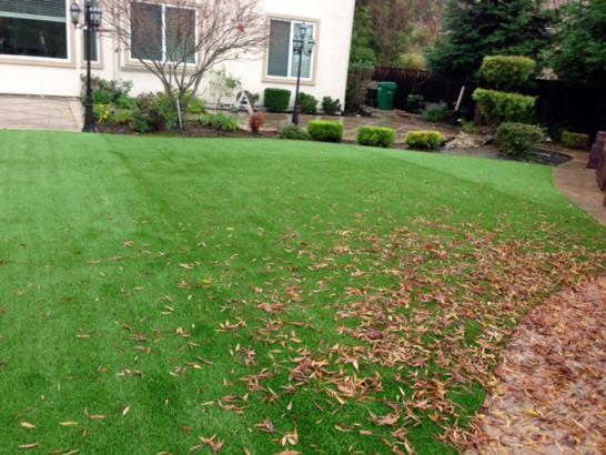 Artificial Grass Photos: Outdoor Carpet Redwood Shores, California City Landscape, Beautiful Backyards