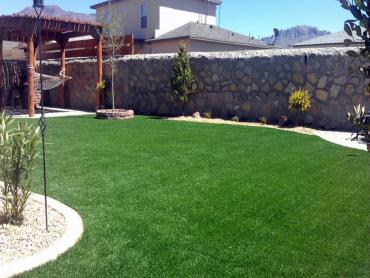 Artificial Grass Photos: Outdoor Carpet Seaside, California Lawn And Landscape, Backyard Landscaping Ideas