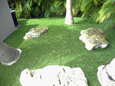 Artificial Grass Photos: Outdoor Carpet Strawberry, California Landscape Design, Backyard