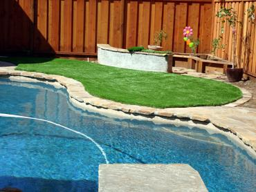 Artificial Grass Photos: Outdoor Carpet Waldon, California Landscape Design, Backyard Pool
