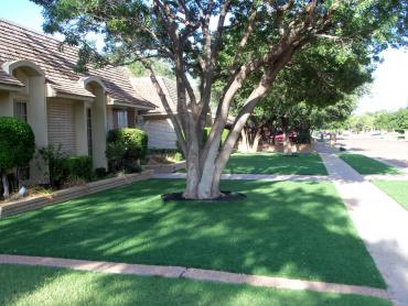 Artificial Grass Photos: Plastic Grass Corralitos, California Backyard Playground, Front Yard