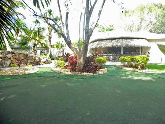Artificial Grass Photos: Plastic Grass Inverness, California Office Putting Green, Commercial Landscape