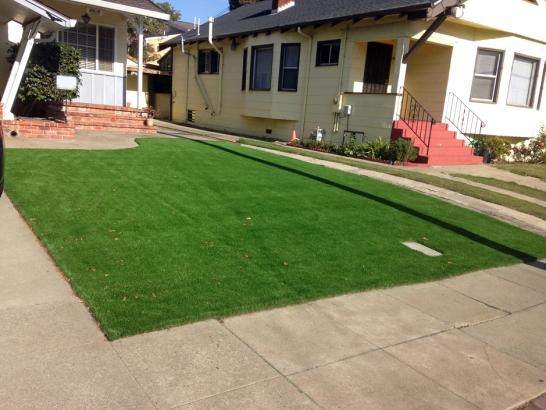Artificial Grass Photos: Plastic Grass Los Altos, California Backyard Deck Ideas, Front Yard Design