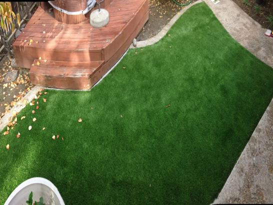 Artificial Grass Photos: Plastic Grass Los Gatos, California Garden Ideas, Small Backyard Ideas