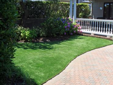 Artificial Grass Photos: Plastic Grass Mountain View, California Backyard Deck Ideas, Front Yard Landscaping Ideas
