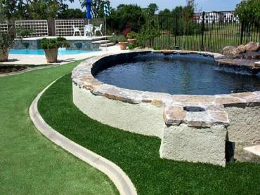 Artificial Grass Photos: Plastic Grass Pine Grove, California Putting Green Grass, Backyard Makeover