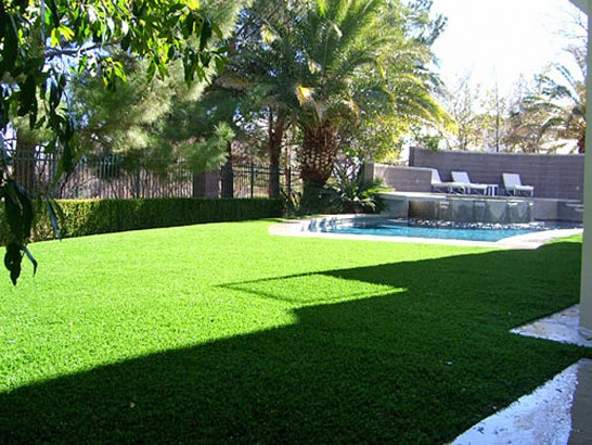 Artificial Grass Photos: Plastic Grass Rancho Calaveras, California Landscape Ideas, Swimming Pools