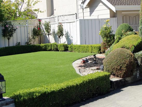 Artificial Grass Photos: Plastic Grass Stanford, California Paver Patio, Front Yard Landscape Ideas
