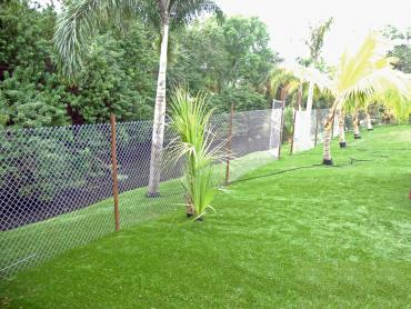 Artificial Grass Photos: Synthetic Grass Cost Dogtown, California Gardeners, Beautiful Backyards