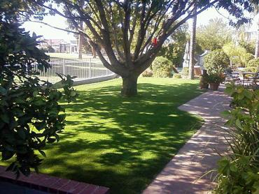Artificial Grass Photos: Synthetic Grass Cost Ridgemark, California Lawn And Garden