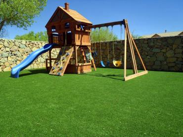 Artificial Grass Photos: Synthetic Grass Cost Salinas, California Lawns, Backyard