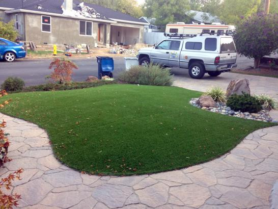 Artificial Grass Photos: Synthetic Grass El Sobrante, California City Landscape, Small Front Yard Landscaping