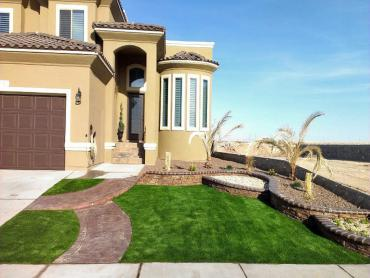 Artificial Grass Photos: Synthetic Grass Martinez, California Roof Top, Landscaping Ideas For Front Yard