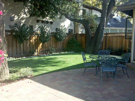 Artificial Grass Photos: Synthetic Grass San Anselmo, California, Backyard Design