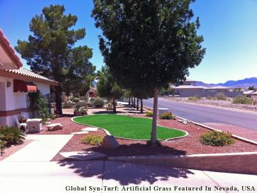 Artificial Grass Photos: Synthetic Lawn Berkeley, California Gardeners, Front Yard Ideas