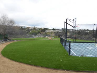 Artificial Grass Photos: Synthetic Lawn Castro Valley, California Playground, Commercial Landscape