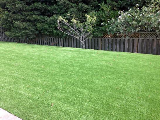 Artificial Grass Photos: Synthetic Lawn Riverdale, California Landscaping Business, Backyard Garden Ideas