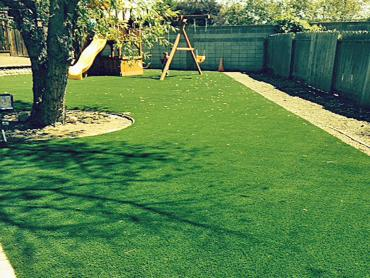 Artificial Grass Photos: Synthetic Lawn Rocklin, California Indoor Playground, Backyard Ideas