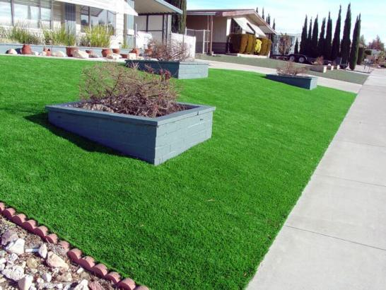 Artificial Grass Photos: Synthetic Lawn San Martin, California Landscape Ideas, Front Yard Design