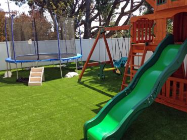 Artificial Grass Photos: Synthetic Lawn Sonora, California Home And Garden, Backyard Designs
