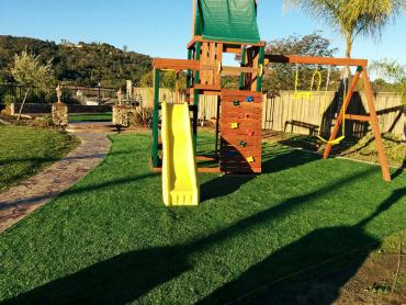 Artificial Grass Photos: Synthetic Lawn Walnut Creek, California Lawns, Backyards